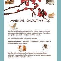 Animal Shows 4 Kids