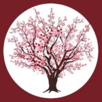 Cherry Blossom Nursery School