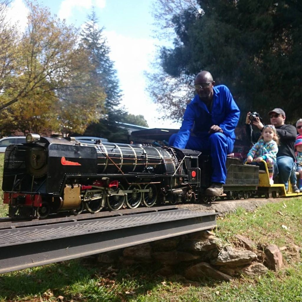 Mini Steam Trains