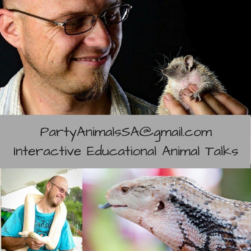 Party Animals SA