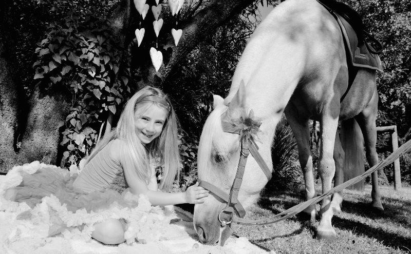 Children's Party Pony Hire