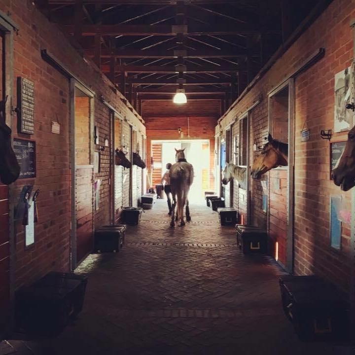 Waterfall Equestrian Centre