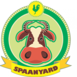 Spaanyard Kids Party Venue